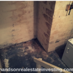 Chasing #Foreclosures! The #Dungeon House! #foreclosure #realestate