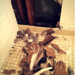 Ground Floor Condo Plumbing Backup & Leak! #waterdamage #propertybrothers
